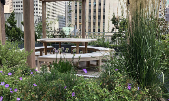 Midtown Law Office Luxury Rooftop Garden